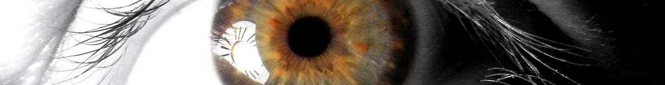 Vision RRG
