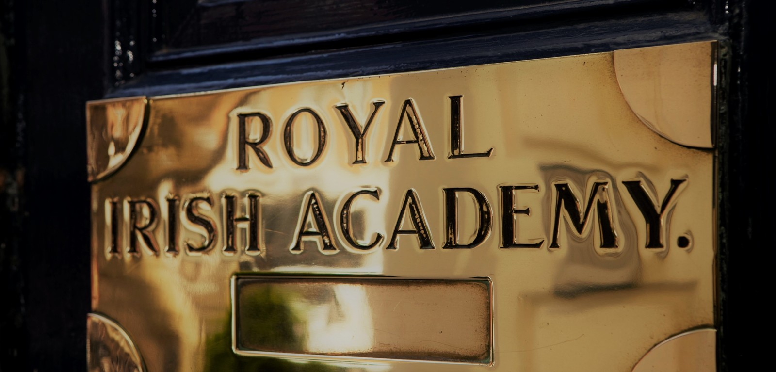 Royal Irish Academy door