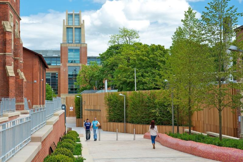 The path leading to the McClay Library