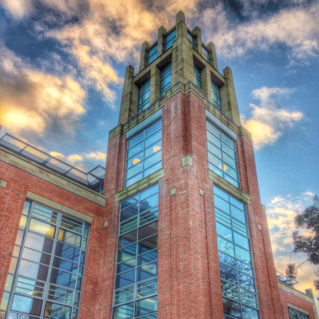 McClay Library Tower