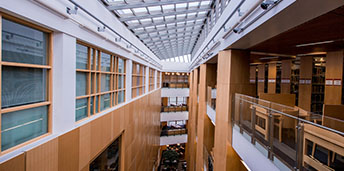 Inside McClay library