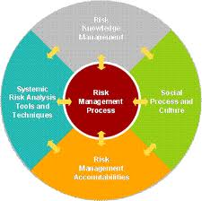 e-learning harness - Risk Management Process