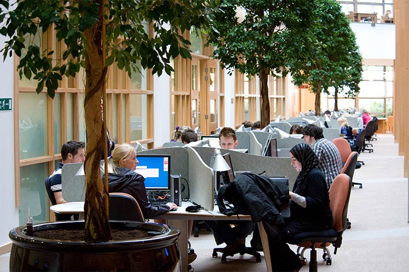 students working in the mcclay library computer study area