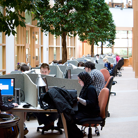 Students working in the computer study area of the McClay library