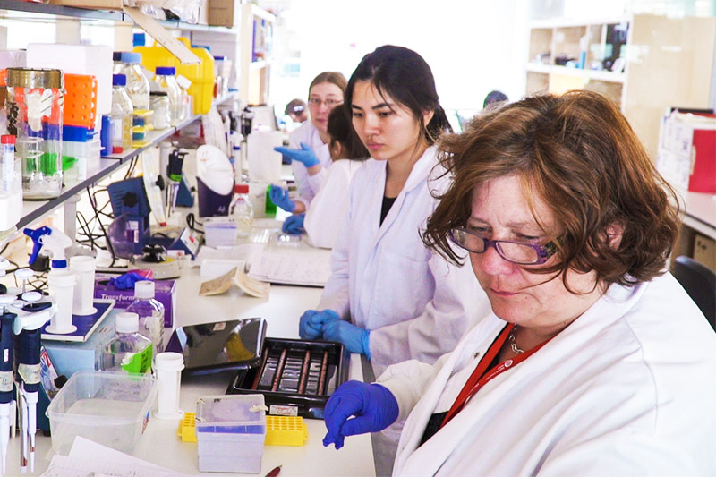 researchers working on Multiple Sclerosis