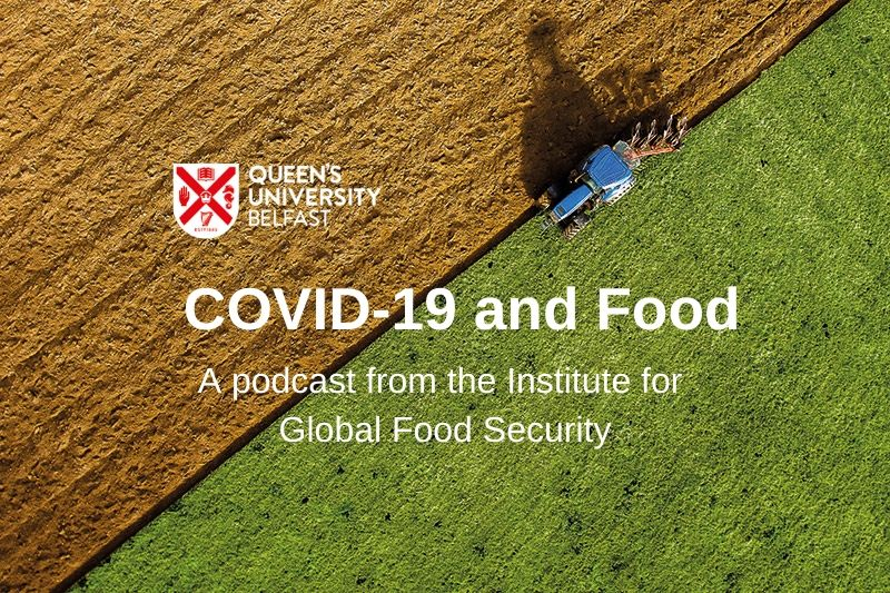 Covid-19 and food podcast logo