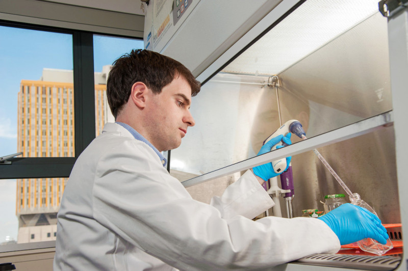 Medical research student working from behind a protective screen
