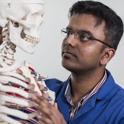 Science Student studying skeleton