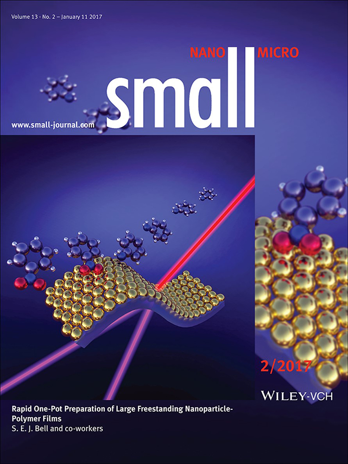 Bell_Small_cover