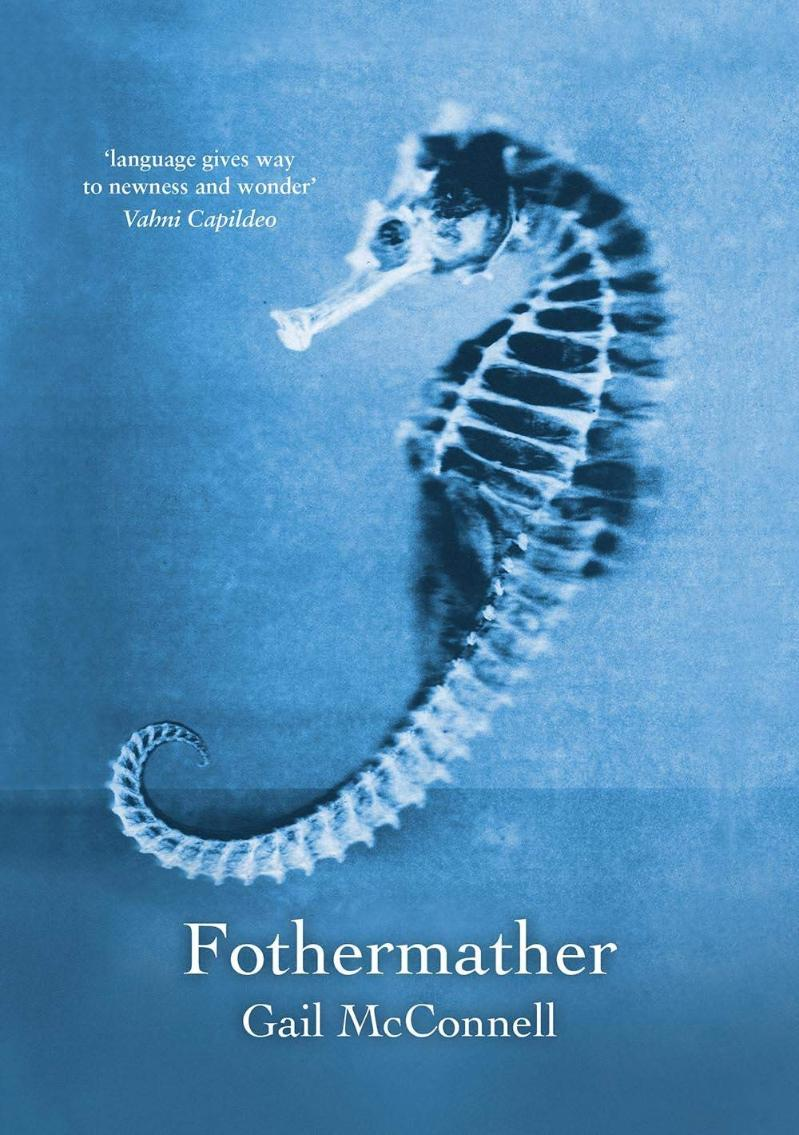 Cover of Fothermather