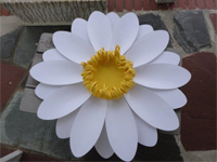 Art Installation