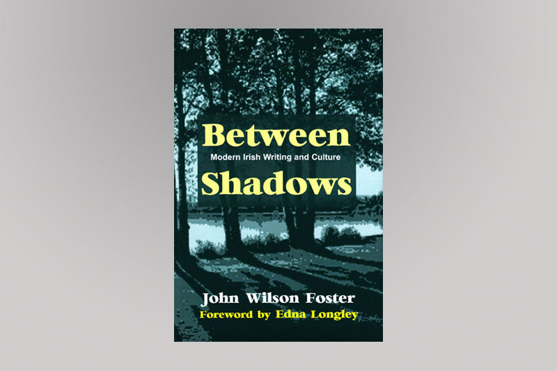 Between Shadows Book Cover