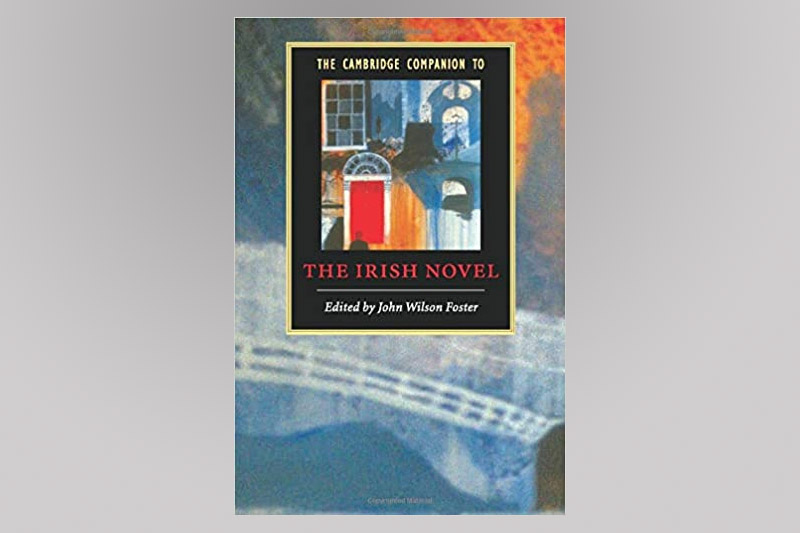 The Irish Novel Book Cover