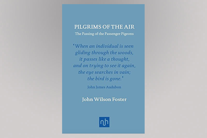 Pilgrims of the Air Book Cover
